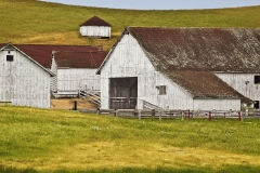 Sonoma County Barn