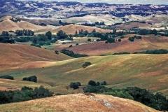Hills-of-Sonoma-Co.
